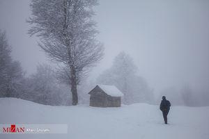 عکس/ کلبههای برفی تالش