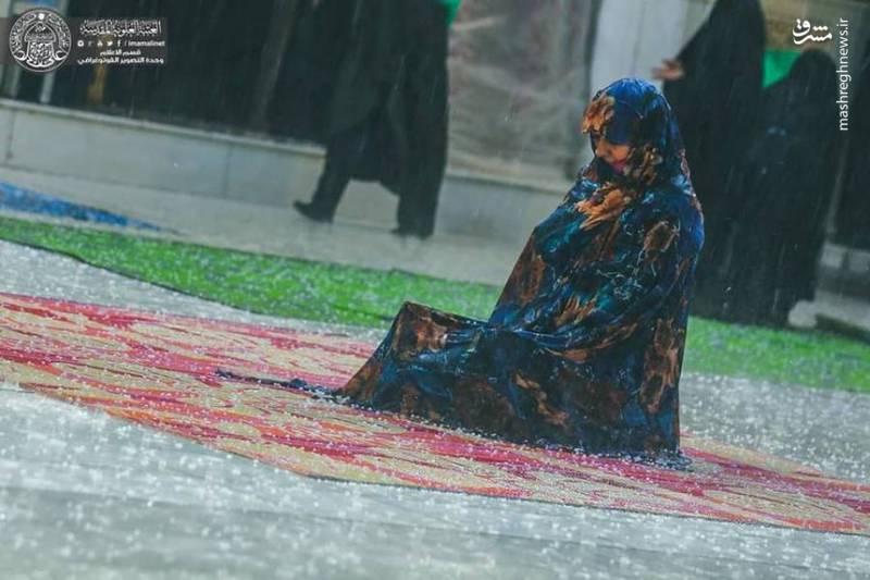 حال و هوای زائران حرم حضرت علی (ع) زیر باران رحمت الهی