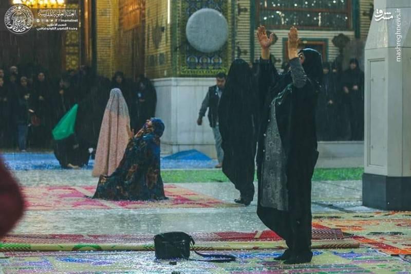 راز و نیاز با خداوند در حرم حضرت علی (ع) زیر باران رحمت الهی