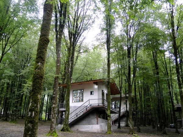ساخت کلبه های بوم گردی برای مسافران در پارک جنگلی ناهارخوران