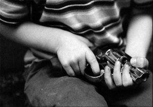 کولهپشتیهای ضد گلوله