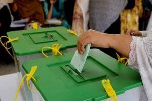 حزب «مسلم لیگ پاکستان» اکثریت کرسی های سنا را به خود اختصاص داد