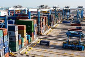 واردات بیش از 8 میلیارد تومان «لپه» +جدول