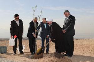 عکس/ درختکاری روحانی در شمالشرق تهران