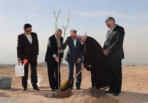 روحانی: همه مردم در طرح درختکاری مشارکت کنند