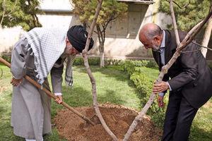 عکس/ کاشت نهال میوه توسط رهبر انقلاب