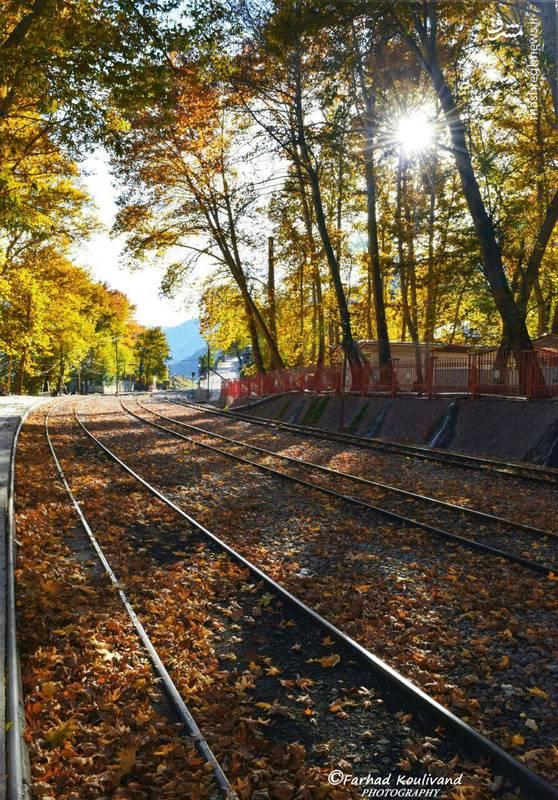 طبیعت پاییزی ایستگاه راه آهن بیشه