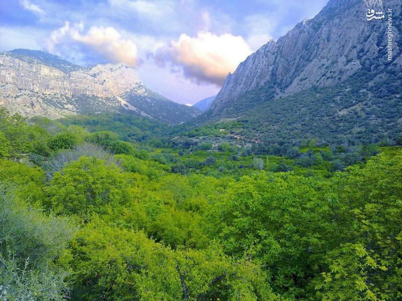 طبیعت بکر پارک جنگلی باراجین قزوین
