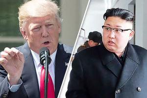 فیلم/ عقب نشینی آمریکا در مقابل کره شمالی