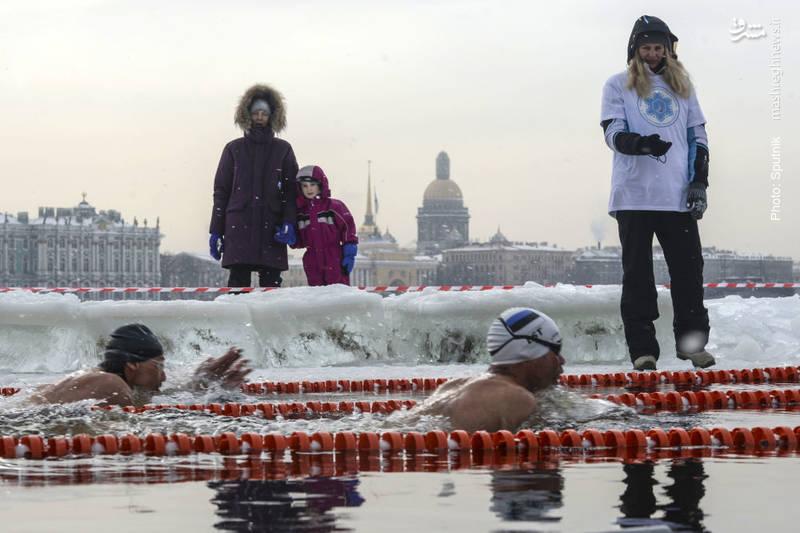 مسابقات شنا در آبهای سرد سنپترزبورگ