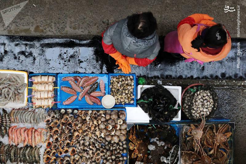 یک مغازه فروش محصولات دریایی در سئول
