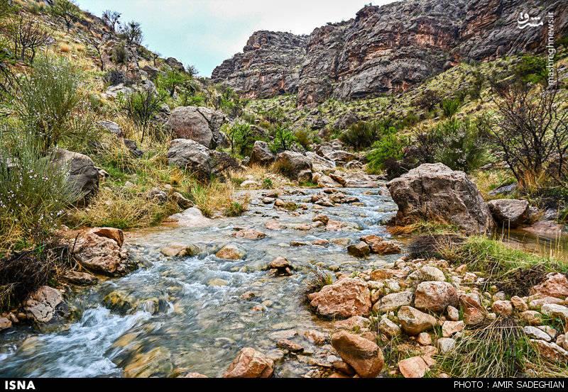 آب آبشار و چندین چشمه در نزدیکی آن پس از عبور از میان درختان انجیر به گورآب میریزد.