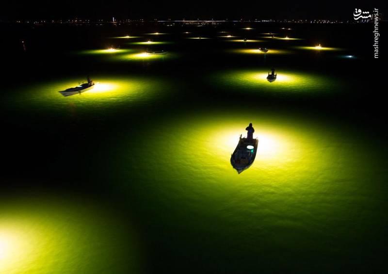 صید ماهی در شب