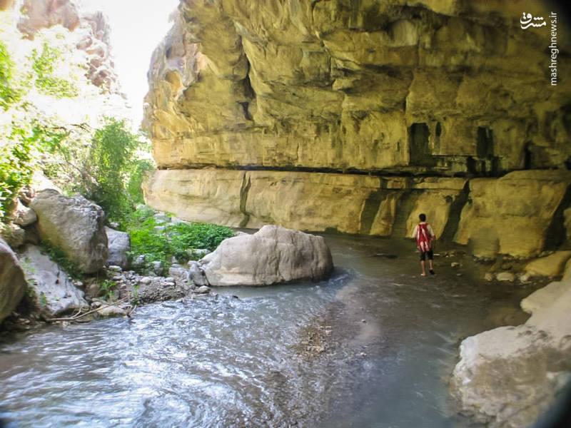 هر چه جلوتر بروید به یمن وجود چشمه سارهای زیبای مسیر و آبشارهای جاری از اطراف صخره پر آب تر و جذاب تر می شود در عین آنکه بر زلالیت و شفافیت آن هم افزوده می شود.