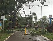 طوفان مارکوس