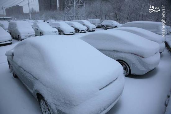 بارش برف سنگین در چین