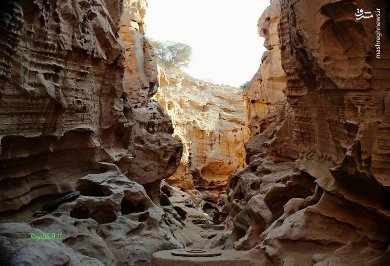 همانطور که از اسم دره پیداست، دره چاههای زیاد اما کم عمقی هم دارد، چاههایی که اهالی روستای چاهو آن را برای ذخیره و هدایت آب باران حفر کردهاند و هرکدام از آنها قدمتی باستانی دارند.