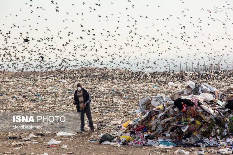 عکس/  بحران پلاستیکی در کمین ایران|2802185