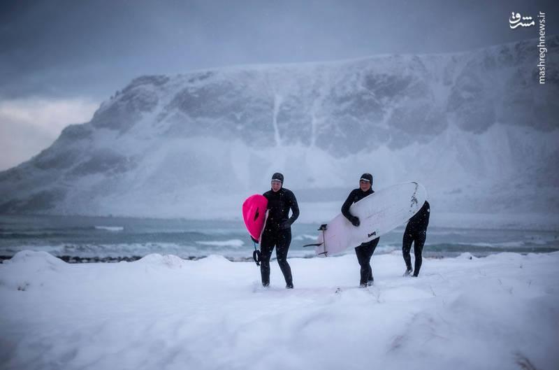 عکس/ موج سواری در سرمای شدید نروژ|2802187