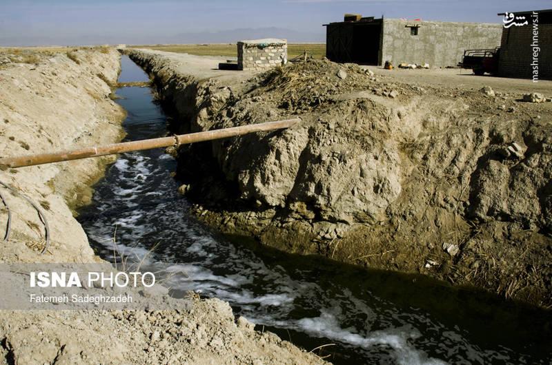 در طی این ۱۵ سال خشکی منطقه، کشاورزان برای گذران زندگی مجبورند از آب های شور زیرزمینی برای اندک کشاورزی خود استفاده کنند.