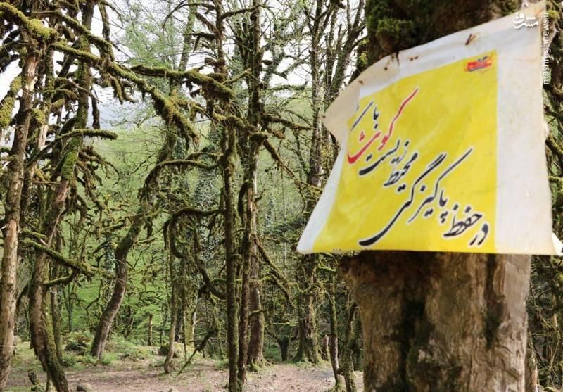 رفتار زشت مسافران نوروزی در گیلان
