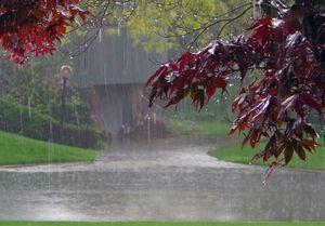 کاهش ۴۹ درصدی بارش نسبت به سال گذشته