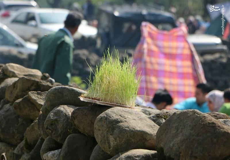حال و هوای روز طبیعت در گیلان