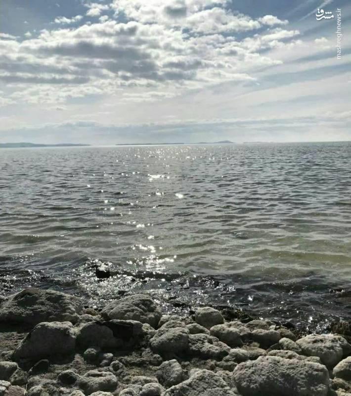 دریاچه ارومیه زنده شد