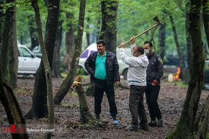 روز اعلام جنگ با طبیعت! +عکس