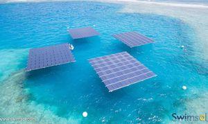 عکس/ ایده مالدیویها برای حفظ محیط زیست