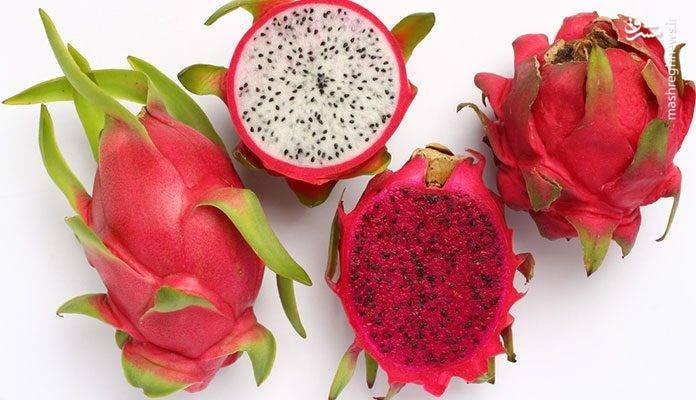 میوه اژدها، میوهای زیبا و در عین حال عجیب و غریب است که به نامهای مختلف دیگری از جمله بیتایا، پیتاهایا، گلابی توتفرنگی، هو لونگ گو، میوه کاکتوس، نانتیکا فروت یا تان لانگ و عروس شب نیز دارد.