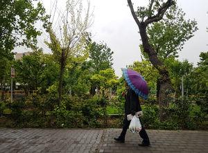 بارش اولین باران سال 97 در تهران