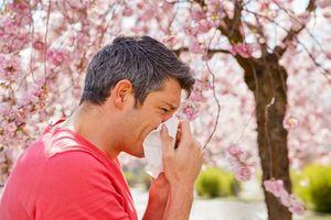 راهکار های سریع پیشگیری از آلرژی و بیماری های بهار را بدانید