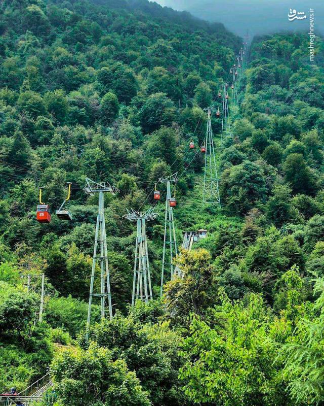 نمایی زیبا از جنگلهای انبوه سرسبز و تله کابین نمک آبرود