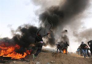 فلسطین نمایه