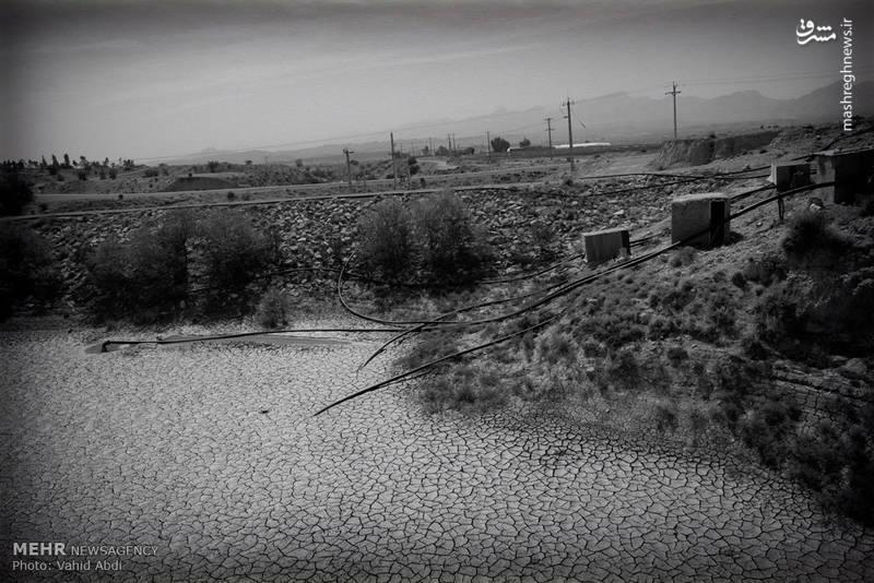 خشکسالی و تبعات آن در بوشهر