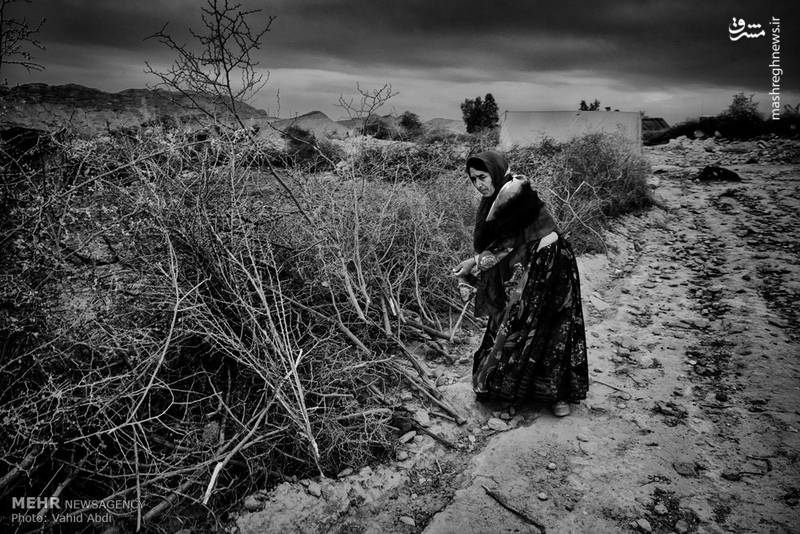 افزون بر کاهش مقدار بارندگی توزیع نامناسب زمانی بارش ها از جمله دیگر مشکلاتی است که استان بوشهر با آن روبرو است.