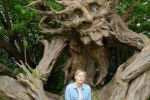 عکس/ پرورش غول درختی در بلژیک!