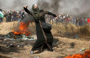 آیا کسی مرا در غزه لایک میکند؟!