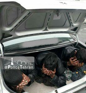 عکس/ قاچاق انسان با پژو در اتوبان تهران_قم!