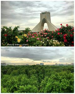 عکس/ هوای دلچسب امروز تهران