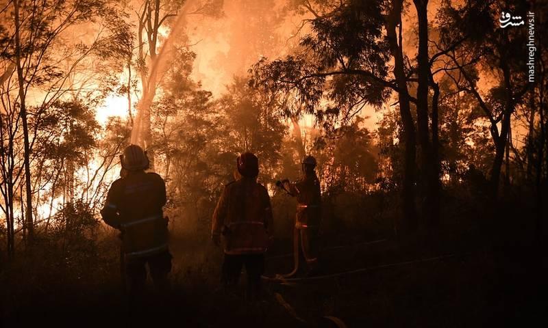 بادهای شدید شعله های آتش را به طرف شمال و شرق به سوی نواحی مسکونی در حومه سیدنی می رانند.