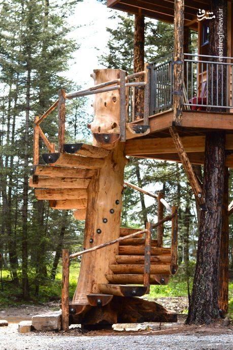 عکس/ هتلی دنج در میان جنگلهای زیبای کانادا