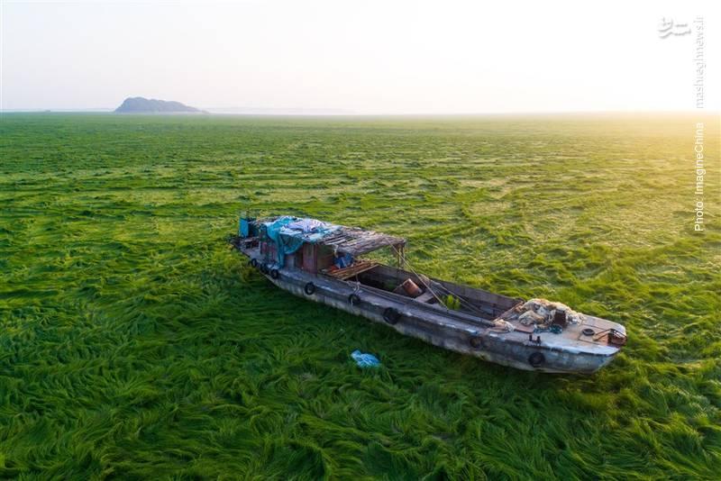 خشکسالی زیبا در استان جیانگشی چین