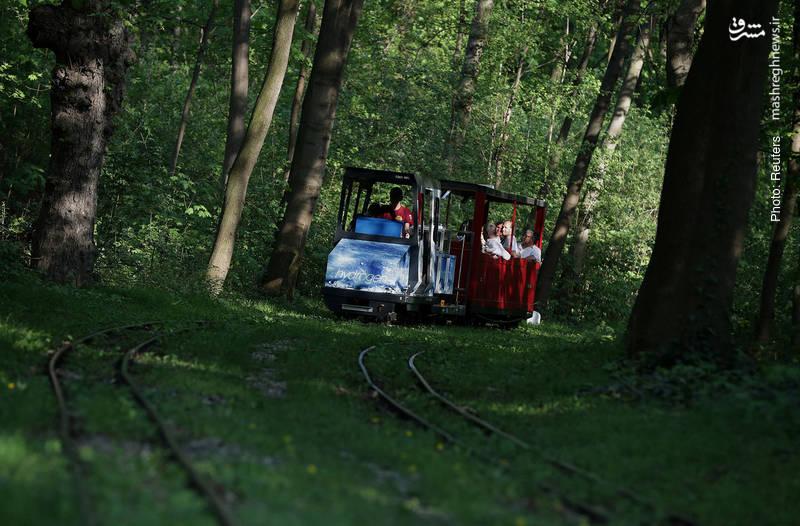 قطار هیدروژنی برای گردشگران در وین اتریش