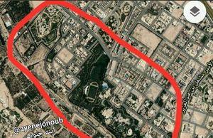 اخبار تائید نشده از تیراندازی در نزدیکی کاخ شاه سعودی +فیلم