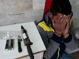 دستگیری زورگیر بزرگراه آزادگان محدوده مرتضی گرد