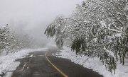 """""""بارش برف"""" در انتظار استان تهران"""