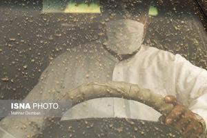 عکس/ تکرار گرد و خاک در اهواز