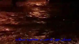 فیلم/ مردم پلدختر در محاصره سیلاب